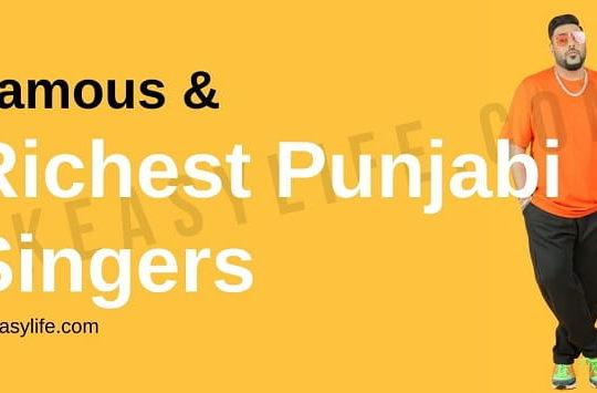 Richest Punjabi Singers