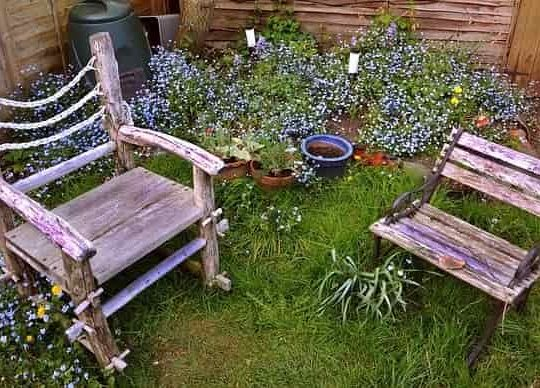 Re-Greening Your Lawn